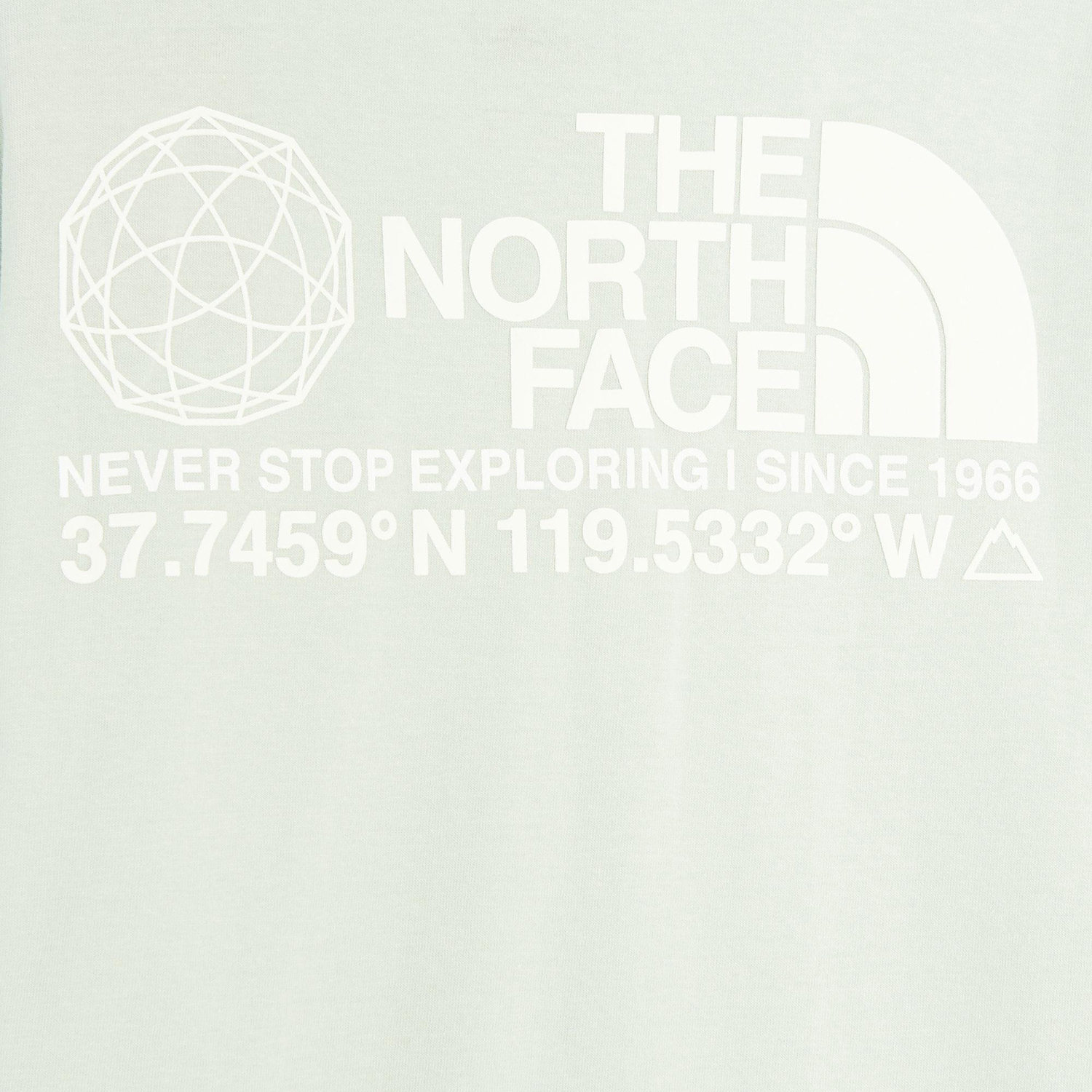 The North Face Logo Plus Tee